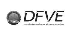 DFVE Dunaújvárosi Főiskola Vízilabda Egyesület