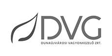 DVG Zrt.